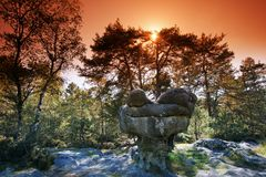 Sandstone sphinx form in Fontainebleau forest Stock Photos