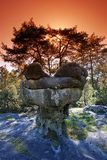 Sandstone sphinx form in Fontainebleau forest Royalty Free Stock Image