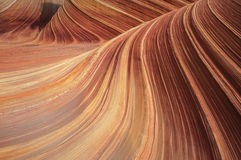 Sandstone Swirl Coyote Buttes Royalty Free Stock Photos