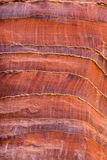 Sandstone texture. Of Petra in Jordan Royalty Free Stock Photography