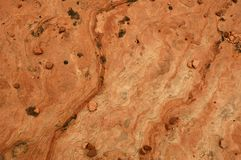 Sandstone Texture. Macro of sandstone texture for use as a background.  Zion National Park, Utah Royalty Free Stock Photography