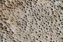 Sandstone texture Stock Images
