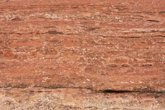 Sandstone texture Stock Image
