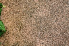 Sandstone texture for background. Grange surface Royalty Free Stock Photography