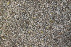 Sandstone texture. Background of grey pebbles Stock Image