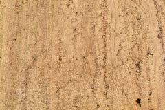 Sandstone texture beige Stock Images