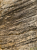 Sandstone texture Royalty Free Stock Image
