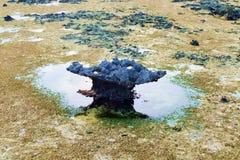 sandstone utah view Στοκ εικόνα με δικαίωμα ελεύθερης χρήσης