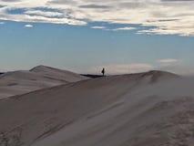 sandstorm image stock
