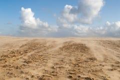 Sandstorm in Denmark Royalty Free Stock Images