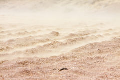 Sandstorm in desert Royalty Free Stock Image