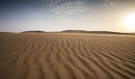 Sandstorm in a desert. Landscape of Liwa desert at sunset, part of Empty Quarter desert, the largest continuous sand desert in the world royalty free stock images