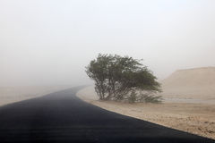 Sandstorm in the desert of Qatar Stock Photo