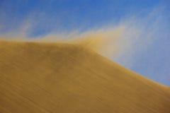 Sandstorm on dune Stock Photos