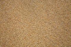 Sandstrand-Beschaffenheitsabschluß oben Stockfotografie