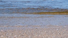 Sandstrand med små vågor Härlig Seascape lager videofilmer