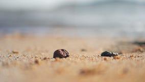 Sandstrand mit flacher Schärfentiefe des ausgewählten Fokus der Seewelle mit Sommeratmosphäre stock video footage