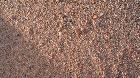 Sandstrand und -wellen stock video