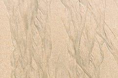 Sandstrandtextur och bakgrund Royaltyfri Fotografi