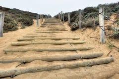 Sandtrappa upp en kulle med wood röstningar Arkivbild