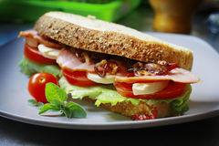 Sanduíche Imagens de Stock