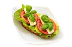 Sanduíche Imagem de Stock
