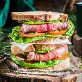 Sanduíche caseiro saboroso com presunto e vegetais Fotografia de Stock Royalty Free