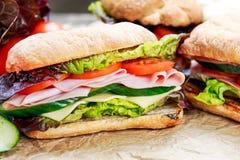 Sanduíche com alface, tomates, pepino, cebola vermelha, salame, presunto, queijo Imagem de Stock