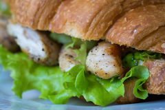 Sanduíche com galinha Fotos de Stock