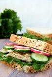 Sanduíche com legumes frescos e galinha imagens de stock