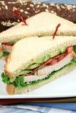 Sanduíche com o peru roasted forno foto de stock