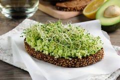 Sanduíche com os brotos do abacate e de alfafa fotografia de stock royalty free