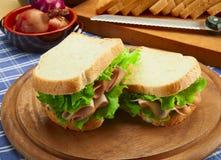 Sanduíche com peru imagem de stock