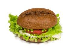 Sanduíche com queijo Fotografia de Stock