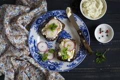Sanduíche com queijo e rabanetes fotos de stock
