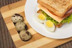 Sanduíche com queijo, tomate e carne fumado imagens de stock