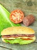 Sanduíche com salami imagem de stock royalty free