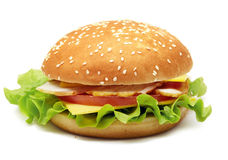 Sanduíche com zumbido, queijo, tomates e alface Imagem de Stock Royalty Free