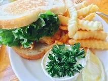 Sanduíche da faixa de peixes com batatas fritas fotografia de stock royalty free