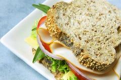 Sanduíche da galinha e da salada fotografia de stock royalty free