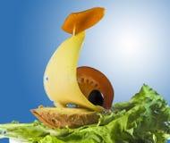 Sanduíche da manhã Foto de Stock