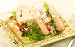 Sanduíche da salada da galinha Imagem de Stock