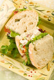 Sanduíche da salada da galinha Fotos de Stock