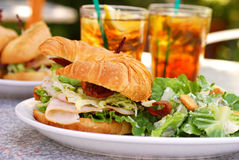 Sanduíche de BLTA Imagem de Stock Royalty Free