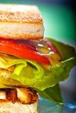 Sanduíche de clube Imagem de Stock