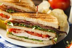 Sanduíche de clube de Turquia e de bacon Foto de Stock