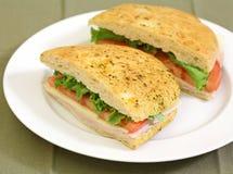 Sanduíche de galinha Foto de Stock Royalty Free