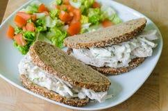Sanduíche de galinha dois em um prato com salada verde Fotografia de Stock