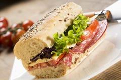 Sanduíche de Panini imagens de stock royalty free