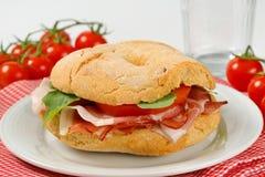 sanduíche de presunto Seco-curado foto de stock
